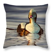 Long Tail Duck Throw Pillow