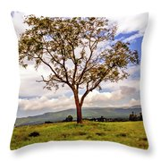 Long Tree Shenandoah Valley West Virginia  Throw Pillow