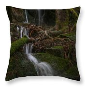 Longexposure Water Throw Pillow