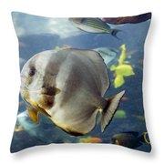 Longfin Batfish Throw Pillow