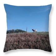 Longhorn In Kansas Throw Pillow