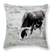 Longhorn Sketch Throw Pillow