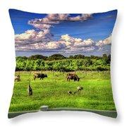 Longhorns At The Ranch Throw Pillow