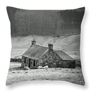 Longing For The Days Of Yore Throw Pillow