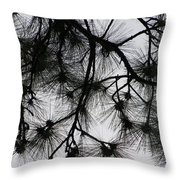 Longleaf Lace Throw Pillow