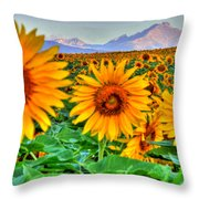 Longs Sunflowers Throw Pillow