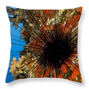 Longspined Sea Urchin Throw Pillow