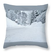 Lonly Road- Throw Pillow by JD Mims