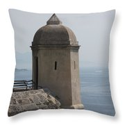 Look - Out Throw Pillow
