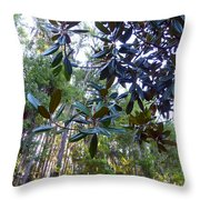 Look At That Rubber Plant Leaves Throw Pillow
