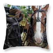 Look At The Camera Throw Pillow
