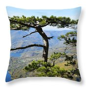 Look At The Pine Trees And The Lake Throw Pillow