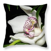 Look Beyond The Imperfections Throw Pillow