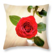 Look Down On A Rose Throw Pillow