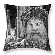 Look From The Past Throw Pillow