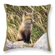Look-out Throw Pillow