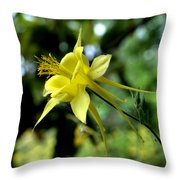 Look To The Skies  Throw Pillow