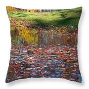Look To Your Soul Throw Pillow