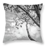 Look Up Into The Sky Throw Pillow