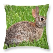 Look Who's Back Throw Pillow