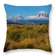 Looking Across Willow Flats To Mt Moran Throw Pillow