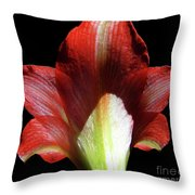 Looking At The Back Of The Lily Throw Pillow