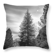 Looking For The Sky Into The Woods Throw Pillow