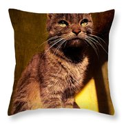 Looking At The Sun Throw Pillow by Loriental Photography