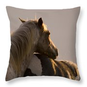 Looking At The Sunset Throw Pillow