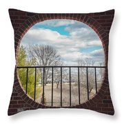 Looking Brick Throw Pillow