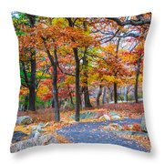 Looking Down A Trail On Bear Mountain New York Throw Pillow