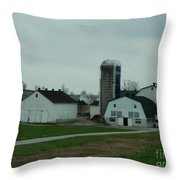 Looking Down An Amish Lane Throw Pillow