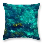 Looking Down At Shellow Water Throw Pillow