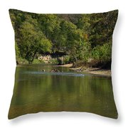 Looking Down Bryant Creek Throw Pillow
