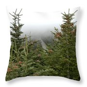 Looking Down From Mnt. Mitchell Throw Pillow