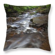 Looking Downstream Throw Pillow