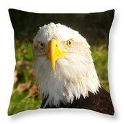 Looking Eagle Throw Pillow