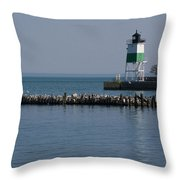 Looking Far Throw Pillow