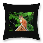 Looking Fo A Friend Throw Pillow