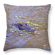 Looking For A Hand Out Throw Pillow
