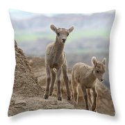 Looking For A Way Down Throw Pillow