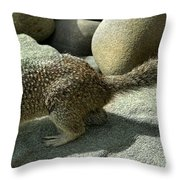 Looking For Crumbs Throw Pillow