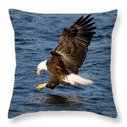 Looking For Fish Throw Pillow