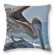 Looking For Leftovers Throw Pillow
