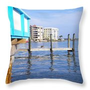 Looking For Scaps Throw Pillow