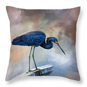 Looking For The Catch Of The Day Throw Pillow