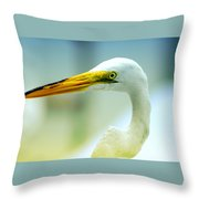 Looking For The Catch Throw Pillow