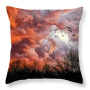 Looking For Trouble Throw Pillow by Lois Bryan