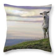 Looking From The Above Throw Pillow