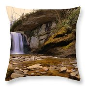 Looking Glass Falls Pisgah National Forest 2 Throw Pillow